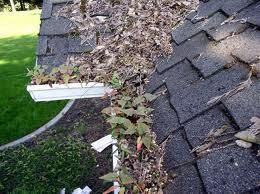 GCS-Gutter-Cleaning-Specialists